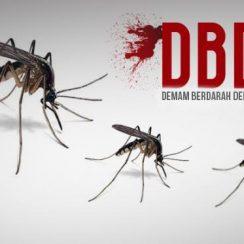 Obat DBD Menaikan Trombosit