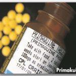 Primakuin - Obat Malaria Tropika Dan Malaria Tertiana