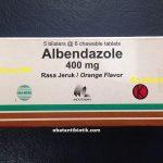 Albendazole Obat Cacingan Yang Ampuh