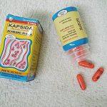 Kapsida